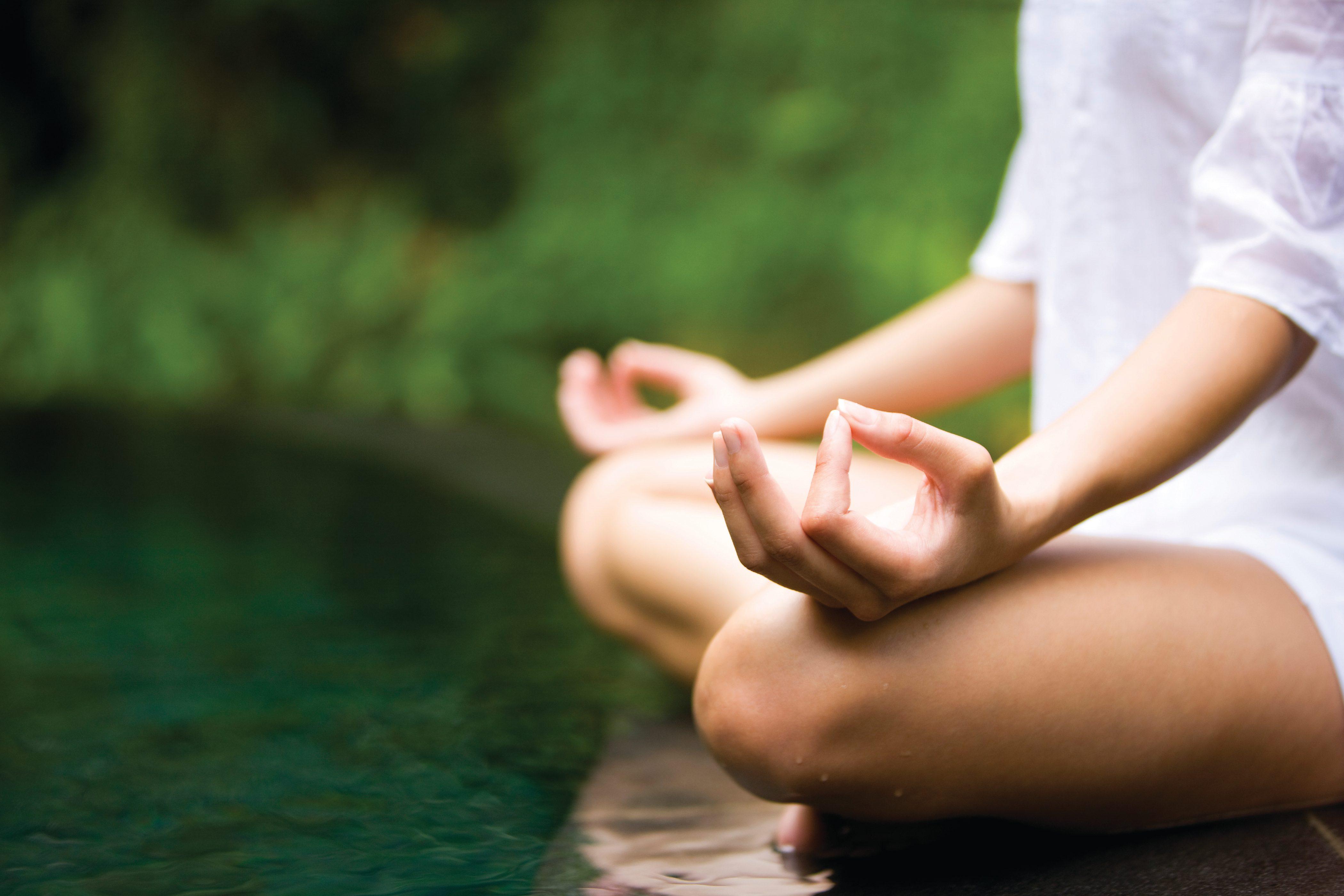 Туры в йога и медитация в ашраме ,индия, экскурсии